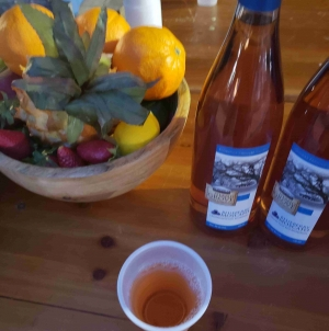 11th Annual Downtown Food and Wine Fest Review